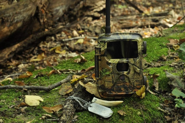 Wildlife camera for forest guards
