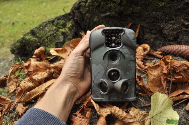 Wildlife night camera trap for thief