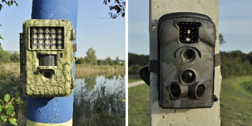 Types of the wildlife camera