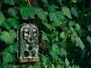Outdoor wildlife camera Ereagle E1B